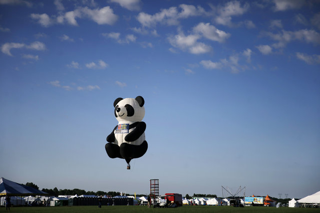 An inflated Panda Bear character hot air balloon flies during the 33rd annual QuickChek New Jersey Festival of Ballooning at Solberg Airport Friday, July 24, 2015, in Readington, N.J. (Photo by Mel Evans/AP Photo)
