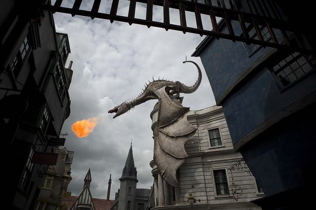 A dragon perched on top of Gringotts bank breathes fire at the Wizarding World of Harry Potter Diagon Alley on Thursday, June 19, 2014 at Universal Studios in Orlando. (Photo by Madeline Gray/The Palm Beach Post)