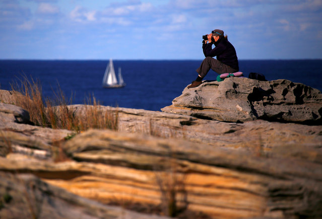A boat sails behind a woman looking through binoculars as she sits on a cliff on a sunny day in Sydney, Australia, May 29, 2016. (Photo by David Gray/Reuters)