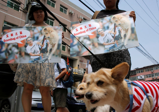 Animal activists hold banners against Yulin Dog Meat Festival as they carry rescued stray dogs in front of Yulin City Representative office in Beijing, China, June 10, 2016. (Photo by Kim Kyung-Hoon/Reuters)