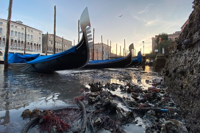 Gondolas are stranded in Venice, northern Italy, during exceptionally low tide, Thursday, January 9, 2020. The water peaked 45 centimeters below sea level in the afternoon making some of the Venice waterways unnavigable. (Photo by Luigi Costantini/AP Photo)