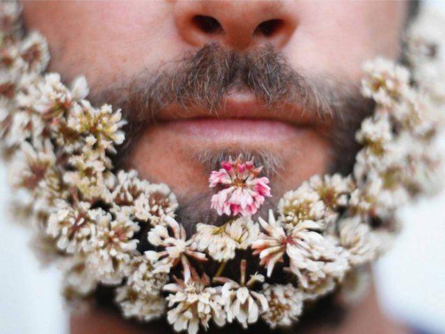 Flower beard. (Photo by designsquish/Tumblr)