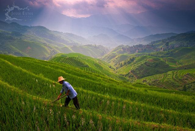Longji Rice Terrace – Guilin, China. (Jesse Estes)