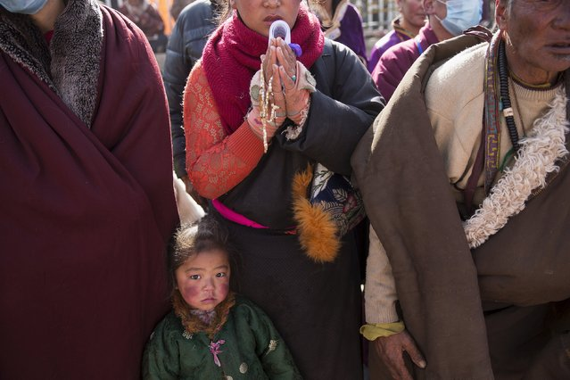 A girl joins other ethnic Tibetan people praying at a Buddhist laymen lodge where thousands of monks and nuns gather for morning chanting session during the Utmost Bliss Dharma Assembly, the last of the four Dharma assemblies at Larung Wuming Buddhist Institute in remote Sertar county, Garze Tibetan Autonomous Prefecture, Sichuan province, China November 1, 2015. (Photo by Damir Sagolj/Reuters)