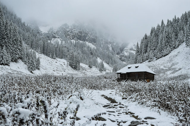 Snow covered fir trees surround a cabin at Valea Rea (The Bad Valley) on Fagaras mountains near Nucsoara, central Romania on October 31, 2019. (Photo by Daniel Mihailescu/AFP Photo)