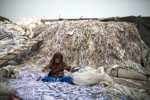 Razia, 9, sorts papers before they are taken to a factory to be recycled in Lahore January 12, 2015. (Photo by Zohra Bensemra/Reuters)