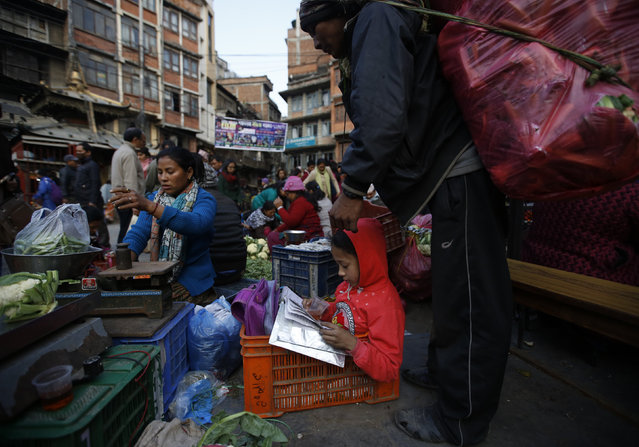 A girl reads her schoolbook sitting in the vegetable basket as her mother sells green vegetable along the streets of Kathmandu, Nepal January 5, 2016Navesh Chitrakar
