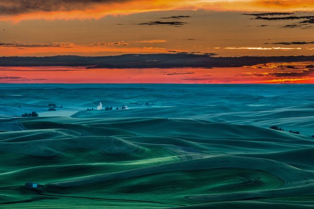 "A sea of rolling dunes resemble gentle ocean waves as the sun rises over farmland, on November 7, 2013. The only sign of life disturbing the smooth scenery is a low flying ""Dawn Duster"" plane. (Photo by Solent)"