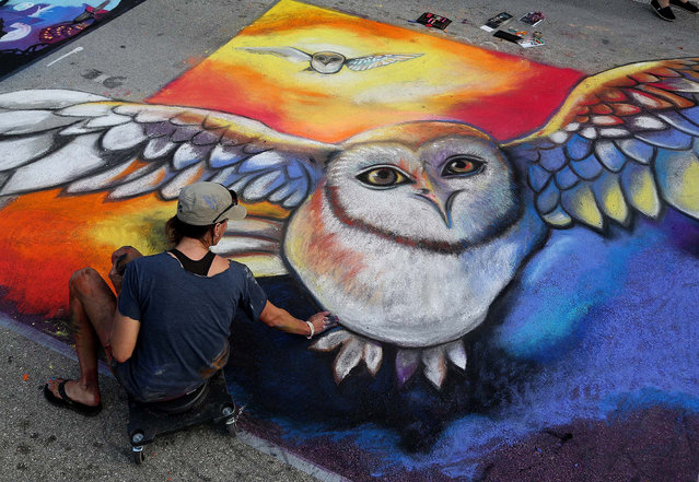 "Carrie Bennett, of Lighthouse Point, spreads chalk on the pavement as she paints the movie ""Legend of the Guardians: The Owls of Ga'Hoole"". (Photo by Greg Lovett/The Palm Beach Post)"
