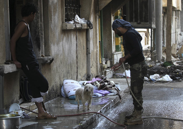 """A """"Free Syrian Army"""" fighter washes a dog in Deir al-Zor, Syria, as a fellow fighter watches October 6, 2013. (Photo by Khalil Ashawi/Reuters)"""