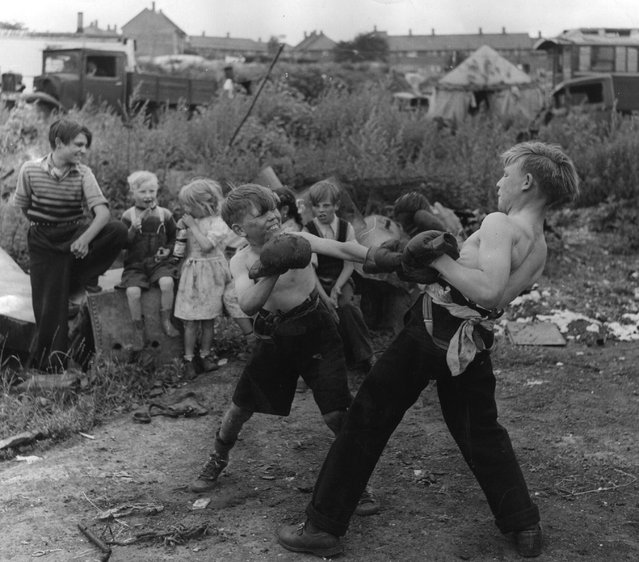 "The unromantic gypsies. Children boxing in a gypsy camp in Kent, England on July 1, 1951. Like all boys these gypsy lads like to try their hand at boxing. Encouraged by their friends they fight it out on Corke's Meadow. Few Romanies now live a life of wandering romance. Most are like the three hundred squatters of Corke's Meadow, Kent, which is part of a ""gypsy problem"" that involves about 100,000 today. Of those about 25,000 can be rightly called gypsies, the rest are Mumpers and Posh-rats and Hobos. Corke's Meadow has both kinds. ""Picture Post"" cameraman Bert Hardy photographs the Corke's Meadow gypsies in their encampment. (Photo by Hulton-Deutsch Collection/Corbis via Getty Images)"
