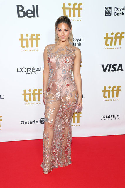 Pia Toscano attends the 2019 Toronto International Film Festival TIFF Tribute Gala at The Fairmont Royal York Hotel on September 09, 2019 in Toronto, Canada. (Photo by Jemal Countess/WireImage)
