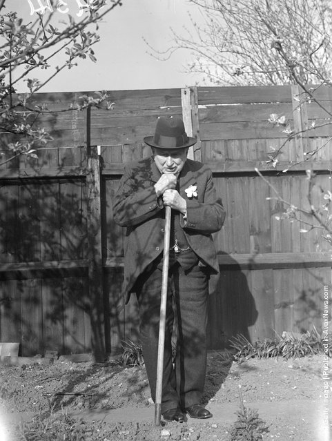 1938: Mr C Cole of Watford, 100 years old on Monday April 4th, still potters about in his garden