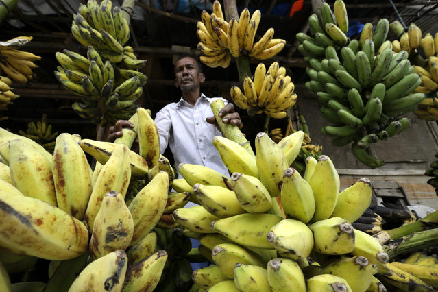 A banana vendor waits for costumers at Lambaro traditional Market, in Aceh, north Sumatra, Indonesia, 27 August 2015. The Indonesian government is expected to announce new policies on 27 August 2015, meant to boost the value of the Indonesian Rupiah and increase investment into South East Asia's largest economy. (Photo by Hotli Simanjuntak/EPA)