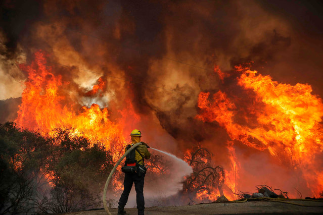 San Miguel County Firefighters battle a brush fire along Japatul Road during the Valley Fire in Jamul, California on September 6, 2020. The Valley Fire in the Japatul Valley burned 4,000 acres overnight with no containment and 10 structures destroyed, Cal Fire San Diego said. (Photo by Sandy Huffaker/AFP Photo)