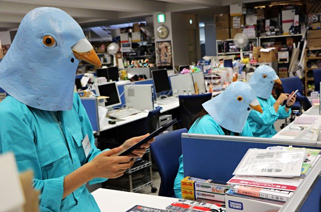 Employees of Japanese toy company Tomy dressed as Twitter birds work at their desks during the company's Halloween Day event at the company headquarters in Tokyo on October 27, 2015. Employees for the Japanese toymaker were allowed to wear their favourite costumes in observance of the holiday. (Photo by Yoshikazu Tsuno/AFP Photo)