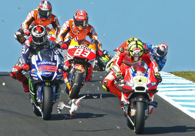 """Scott Barbour nails the peak moments of action across a range of sports, with artistic as well as newsworthy images from the Australian sporting year. Feathers flew when Barbour captured a dramatic collision from the 2015 MotoGP of Australia"". Barbour says: ""Luckily for (Andrea) Iannone he survived the impact with no harm to himself or his bike. The seagull, on the other hand, was not quite so lucky!"". (Photo by Scott Barbour/The Walkley Foundation)"