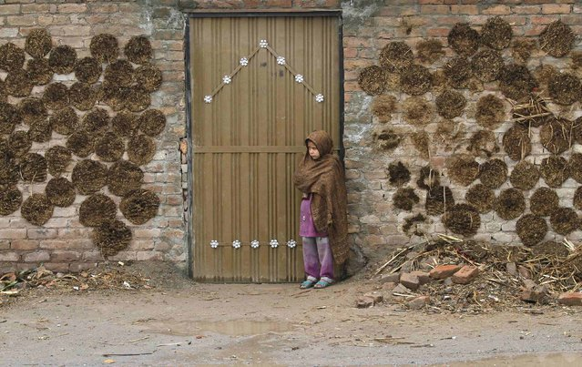 A girl stands beside the gate of her family home with cow dung cakes on wall, on the outskirts of Peshawar January 22, 2015. (Photo by Fayaz Aziz/Reuters)