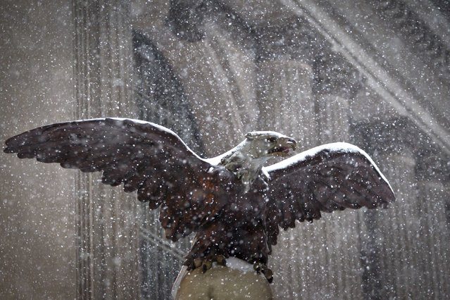 An eagle, used as an architectural detail, is pictured at Grand Central Terminal as it snows in the Manhattan borough of New York January 26, 2015. A swath of the U.S. East Coast from Philadelphia to New York City to Maine was bracing for a potentially historic blizzard on Monday with a winter storm that is expected to dump as much as 3 feet (90 cm) of snow and snarl transportation for tens of millions of people. (Photo by Carlo Allegri/Reuters)