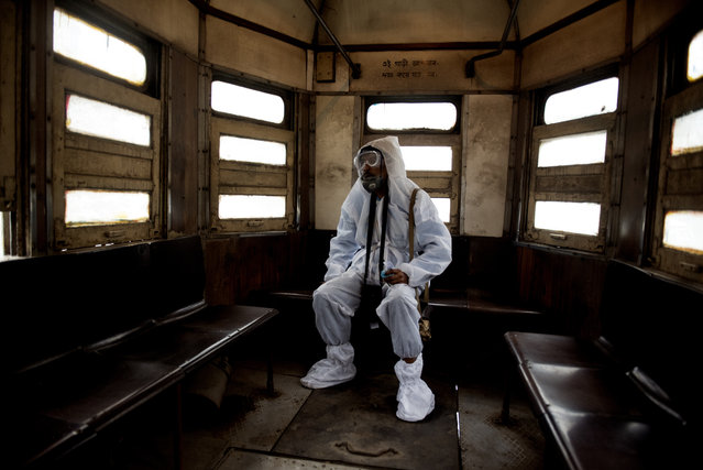 """Fighting Infections (single image) 