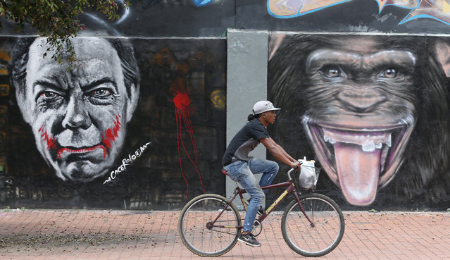 In this March 18, 2015 photo, a man rides past a wall with a mural of Colombia's President Juan Manuel Santos, left, in Bogota, Colombia. Colombia's capital is a mecca for graffiti artists, from established artists promoted on city tours that paint murals to clandestine groups that vindicate spray painting's roots as a form of social protest roots. (Photo by Fernando Vergara/AP Photo)