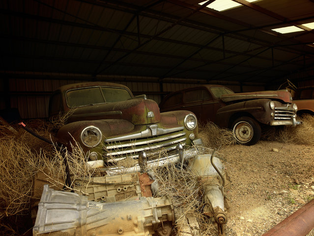 Two old cars are kept into a barn, in 2014, Arizona. (Photo by Dieter Klein/Barcroft Media)