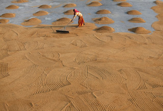A worker spreads rice for drying at a rice mill on the outskirts of Kolkata, India, January 31, 2019. (Photo by Rupak De Chowdhuri/Reuters)