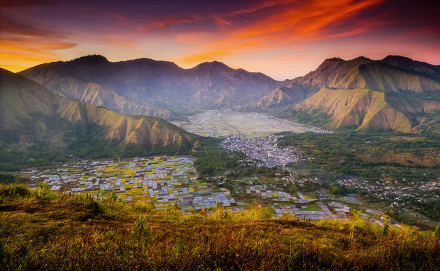 """First place, The Bountiful Earth. """"I hiked to the top of Pergasingan Hill, Indonesia, early in the morning to catch the sunrise. The view was amazing as it overlooked the rolling hills opposite and Sembalun village below. Since most of the people here are farmers, they transform the valley floor into a patchwork of agriculture, growing rice, vegetablesand even strawberries"""". (Photo by Suwandi Chandra/The Guardian)"""