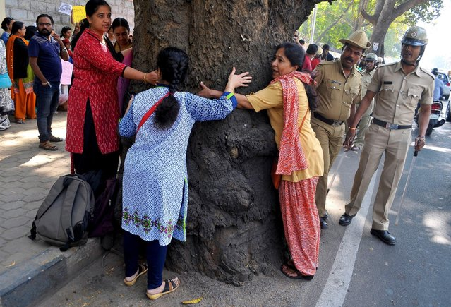 Demonstrators hug a tree during a protest against what they say is the government's plan to chop down trees to widen roads in Bengaluru, India February 11, 2017. (Photo by Abhishek N. Chinnappa/Reuters)