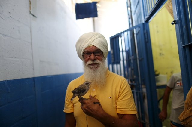 Inmate Robert Maximiliam, a Polish-Canadian, holds his rescue mockingbird outside his cell  at La Joya prison on the outskirts of Panama City, Panama February 5, 2016. (Photo by Carlos Jasso/Reuters)