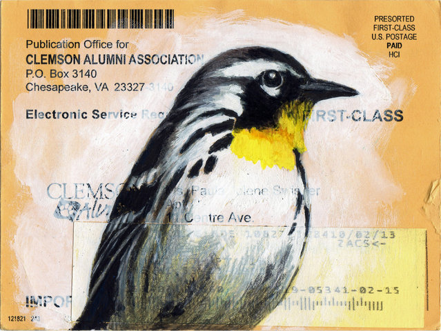 During the recession Paula was struggling to scrape together enough freelance design projects. Wanting to draw but needing to focus my time on seeking freelance work I made a deal with myself that I could only draw if it was with non-art materials. A warbler on alumni letter. (Photo by Paula Swisher/Caters News)