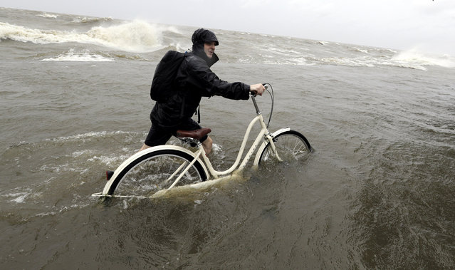 Tyler Holland guides his bike through the water as winds from Tropical Storm Barry push water from Lake Pontchartrain over the seawall in Mandeville, La., on July 13, 2019. (Photo by David J. Phillip/AP Photo)