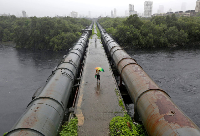 People walk in between water pipes as they cross Mahim creek during rains in Mumbai, India, July 19, 2016. (Photo by Shailesh Andrade/Reuters)