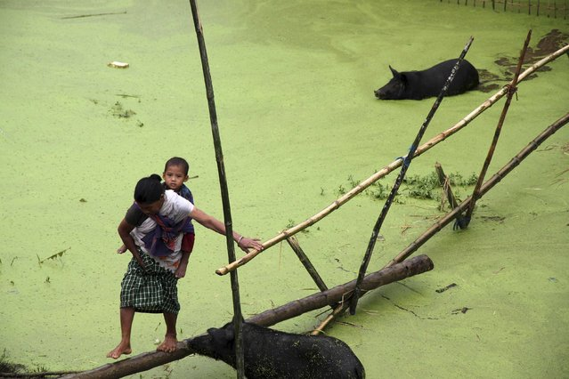 A villager carrying a child uses a makeshift bamboo bridge to cross a flooded area in the Jorhat district, in the northeastern Indian state of Assam, August 25, 2014. The latest heavy rains have caused landslides and floods in many parts of India and Nepal. (Photo by Reuters/Stringer)
