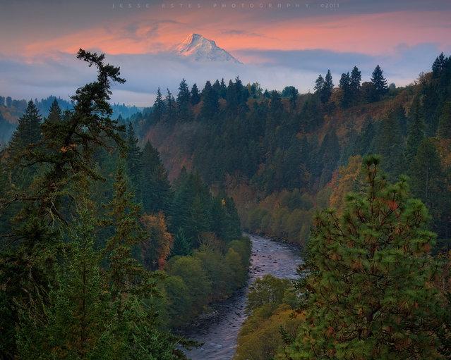 Mount Hood, Oregon. (Jesse Estes)
