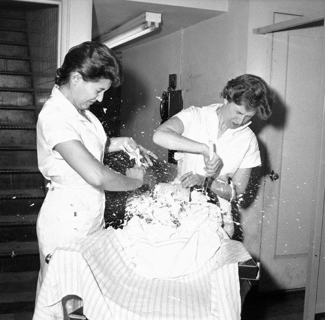 "A too-close shave on their balloon head ""customers"" sends a spray of lather over New York Barber School students Rosanna Lambert, left and Hrefna Olafsdottir, as the balloons burst in New York, October 8, 1959. Harder on the on the student barbers, but easier in the customers, this is the way students at the school learn to use a straight edge razor. (Photo by Robert Kradin/AP Photo)"
