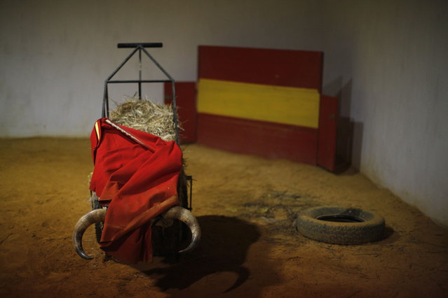 "A ""muleta"", a stick that the red cloth hangs from in the final third of a bullfight, is seen on a cart with bull horns before the training of Spanish bullfighter Rafael Tejada at Reservatauro Ronda cattle ranch in Ronda, near Malaga February 12, 2013. Spain's parliament voted on Tuesday to consider protecting bullfighting as a national pastime, angering animal rights campaigners and politicians in two regions where the sport is banned. (Photo by Jon Nazca/Reuters)"