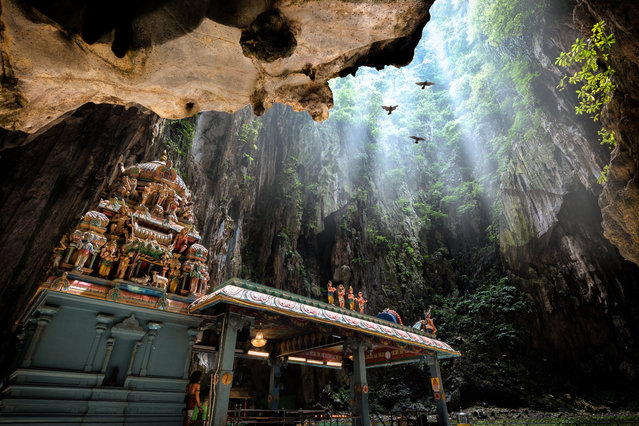 """""""The Batu caves are on the outskirts of Kuala Lumpur, Malaysia. The main temple of Murugan is a Hindu shrine that sits in the centre of the caves, 100m and a steep 272-step journey above ground. In the caves, monkeys and backpackers jostle for position and birds fly overhead"""". (Photo by Mathew Browne/The Guardian)"""