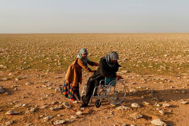 Abu Jakka Farhan, a truffle hunter, is pushed in a wheelchair as he searches for truffles in the desert in Samawa, Iraq, February 23, 2021. (Photo by Alaa Al-Marjani/Reuters)