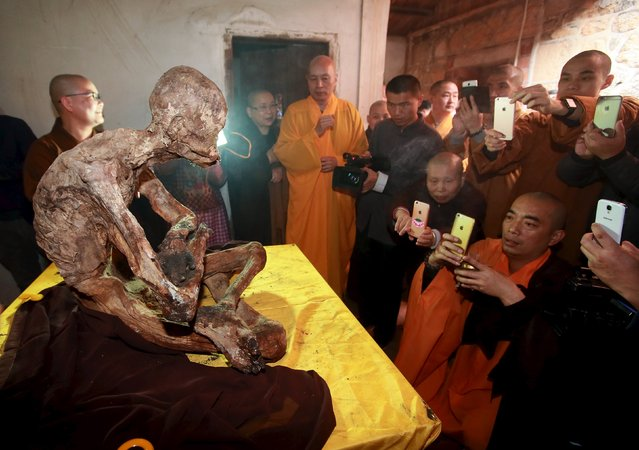 Monks take pictures with their mobile phones of the mummified body of a monk at Puzhao temple in Quanzhou, Fujian Province, China, January 10, 2016. (Photo by Reuters/Stringer)