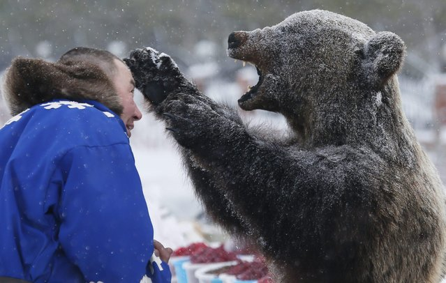 In this photo taken on Sunday, March 15, 2015, a Nenets man examines a stuffed bear at the Reindeer Herder's Day in the city of Nadym, in Yamal-Nenets Region, 2500 kilometers (about 1553 miles) northeast of Moscow, Russia. (Photo by Dmitry Lovetsky/AP Photo)