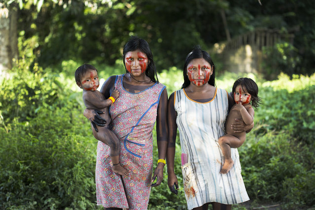 Nhakri and Nhgreipr ti, Xikrin women in the village of Poti-Kr , stand for a portrait under the fruit trees behind their houses. (Taylor Weidman)