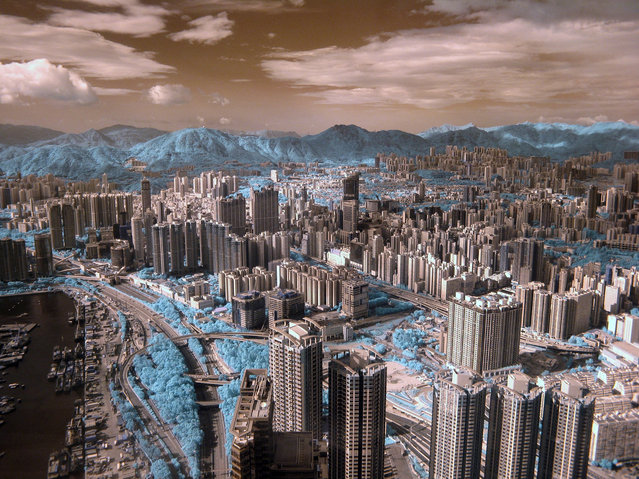 """First place, Greening the City. """"I used infrared to precisely define the exact locations of plant life around Kowloon in Hong Kong, highlighting the scale and proximity of their presence. It is easy to forget the intimacy and importance of thisrelationship"""". (Photo by Halu Chow/The Guardian)"""