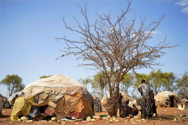 Internally displaced men and children shelter from the sweltering afternoon sun under a tree besides a hut on March 14, 2017 at a makeshift camp on the outskirts of Baidoa, in the southwestern Bay region of Somalia, where thousands of people arrive daily after they fled the parched countryside. (Photo by Tony Karumba/AFP Photo)