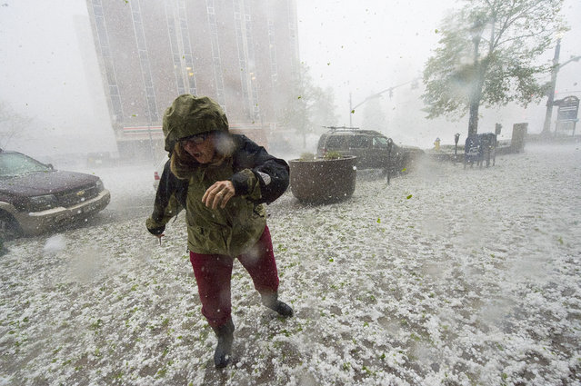 A pedestrian runs for safety as a hail storm hits downtown Colorado Springs, Colo., Wednesday, May 21, 2014. (Photo by Christian Murdock/AP Photo/The Gazette)