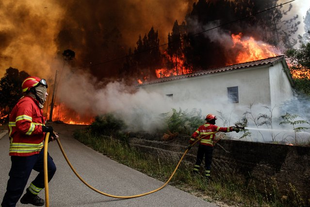 Firefighters battle with a fire in Vale das Porcas, Alvaiazere, central Portugal, 18 June 2017. At least sixty two people have been killed in forest fires in central Portugal, with many being trapped in their cars as flames swept over a road on the evening of 17 June 2017. A total of 733 firefighters are providing assistance. (Photo by Paulo Cunha/EPA)