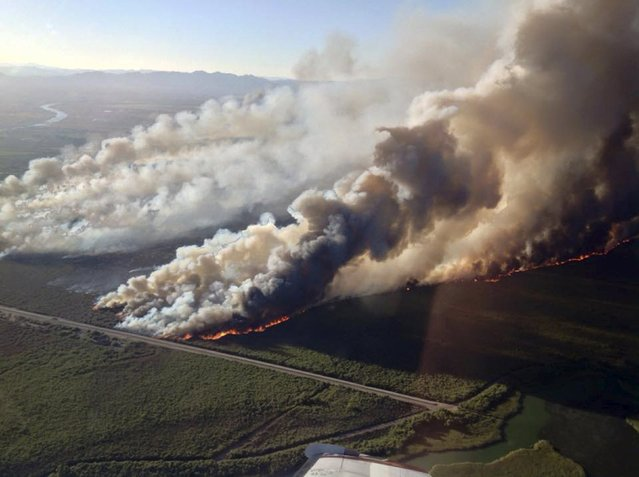 The Willow fire is shown burning across northwestern Arizona in this handout photo taken August 8, 2015 and released to Reuters August 10, 2015. Firefighters battling the major wildfire in northwestern Arizona on Monday reported progress in containing a blaze that forced people out of about 1,000 homes and charred nearly 6,800 acres. (Photo by Reuters/Incident Air Attack/U.S. Forest Service)