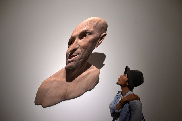 """A visitor observes the sculpture """"Self Stretch"""" by South African artist Evan Penny, at the Hyperrealist Sculpture 1973-2016 exhibition in the Museum of Bellas Artes in Bilbao, northern Spain, July 27, 2016. (Photo by Vincent West/Reuters)"""