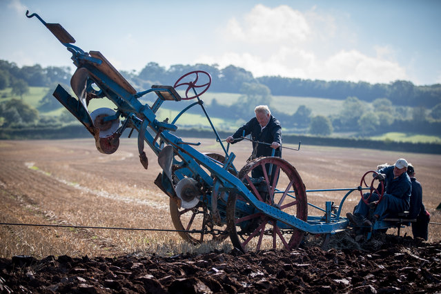 Competitors sit on a plough that is being towed between two vintage steam engines as they take part in the Mendip Ploughing Society's 146th annual competitions at Stanton Wick Farm near Pensford on September 30, 2015 near Bristol, England. Established in 1858 the Mendip Ploughing Society's annual ploughing match attracts ploughing entries in a variety of classes from the across the West Country using everything from steam engines, pairs of horses and tractors of all ages from vintage to the modern day. (Photo by Matt Cardy/Getty Images)