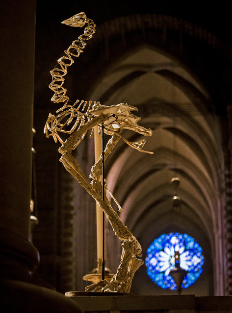 """Artist Christy Rupp's sculpture """"Two Moas"""", made with boiled chicken bones, appears among the works of 30 artists in the multimedia exhibition """"The Value of Food: Sustaining a Green Planet"""" at the Cathedral of St. John the Divine, Wednesday, October 7, 2015, in New York.  (Photo by Bebeto Matthews/AP Photo)"""